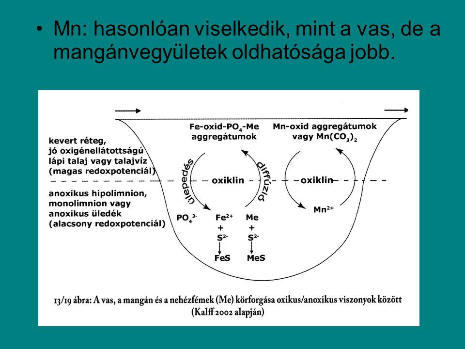 Mn: hasonlóan viselkedik, mint a vas, de a mangánvegyületek oldhatósága jobb.