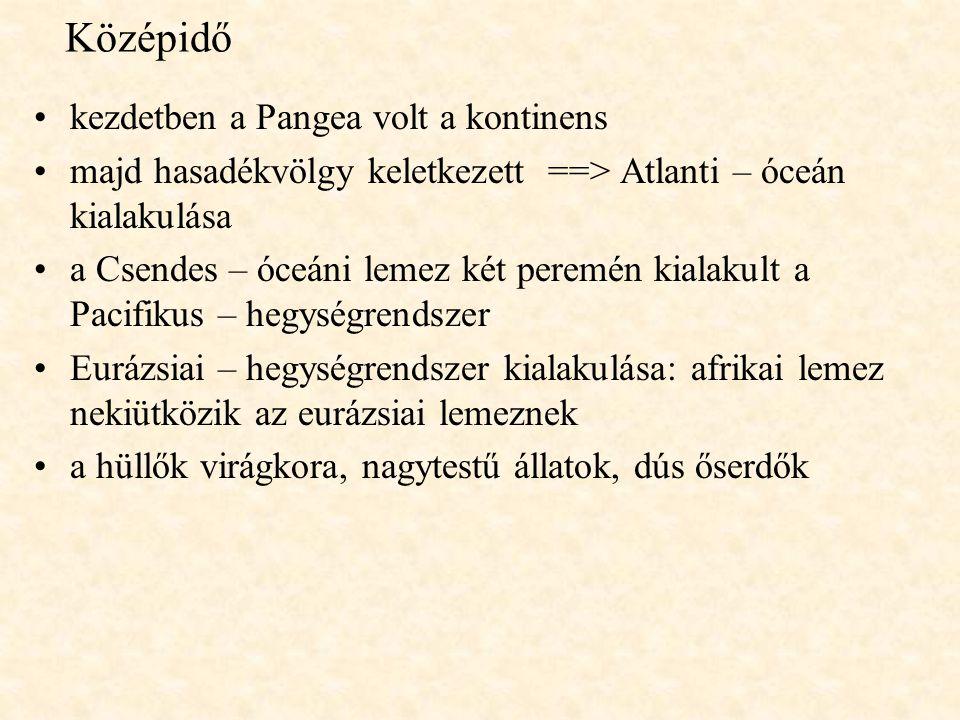 Középidő kezdetben a Pangea volt a kontinens