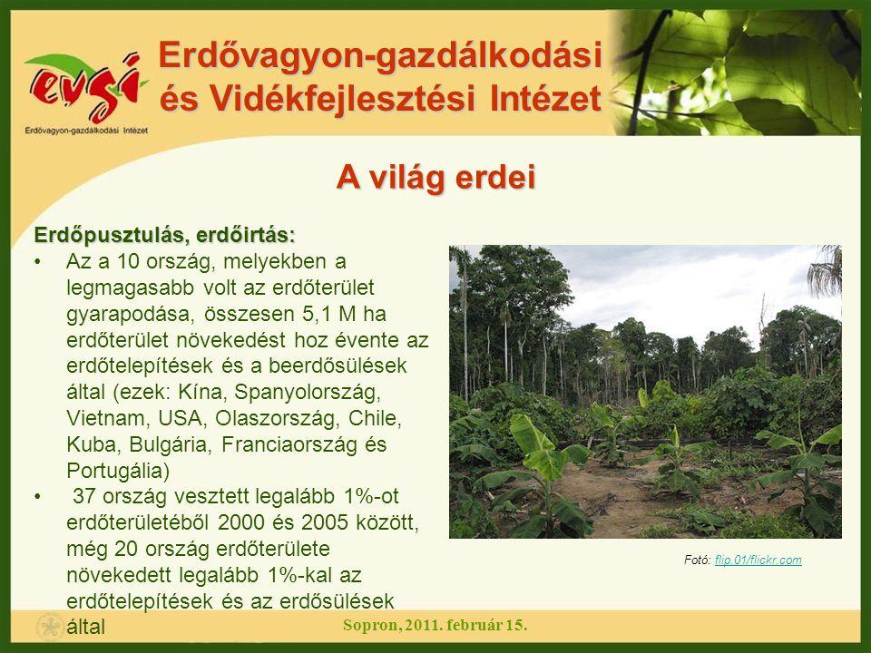 Erdővagyon-gazdálkodási és Vidékfejlesztési Intézet