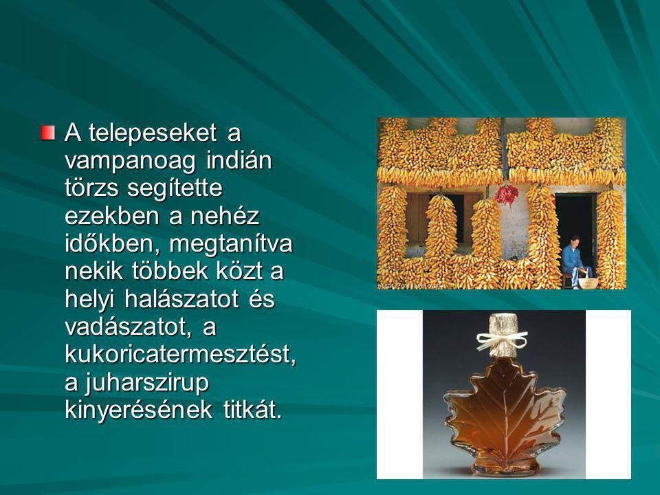 A telepeseket a vampanoag indián törzs segítette ezekben a nehéz időkben, megtanítva nekik többek közt a helyi halászatot és vadászatot, a kukoricatermesztést, a juharszirup kinyerésének titkát.