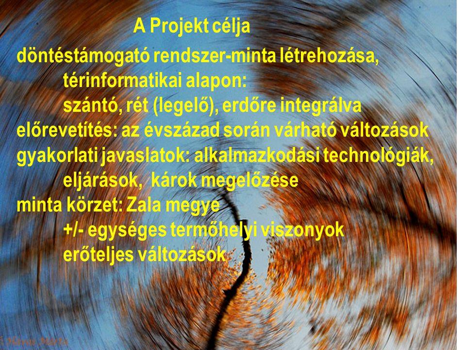 A Projekt célja döntéstámogató rendszer-minta létrehozása, térinformatikai alapon: szántó, rét (legelő), erdőre integrálva.