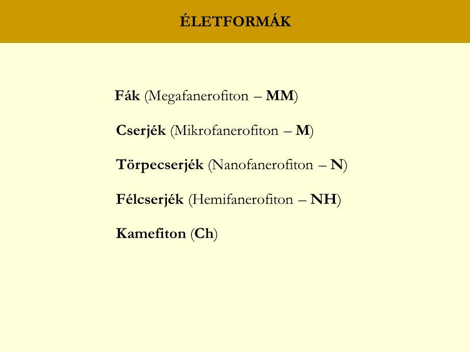 ÉLETFORMÁK Fák (Megafanerofiton – MM) Cserjék (Mikrofanerofiton – M) Törpecserjék (Nanofanerofiton – N)