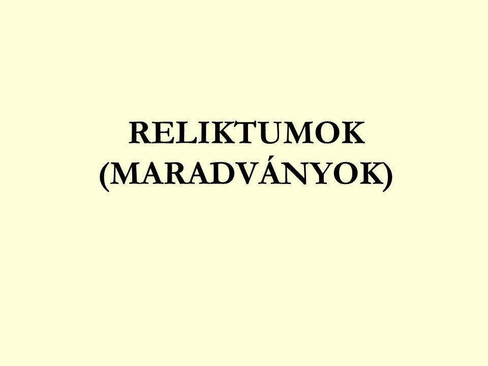 RELIKTUMOK (MARADVÁNYOK)