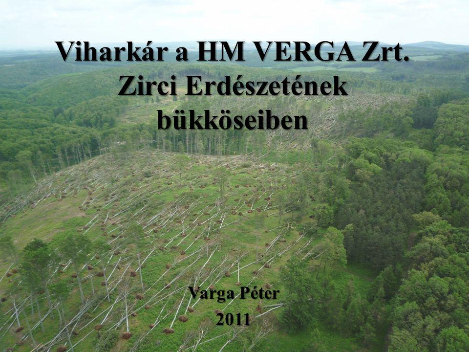 Viharkár a HM VERGA Zrt. Zirci Erdészetének bükköseiben