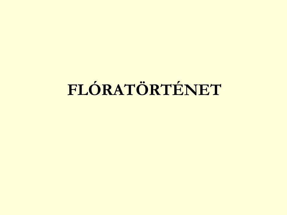 FLÓRATÖRTÉNET