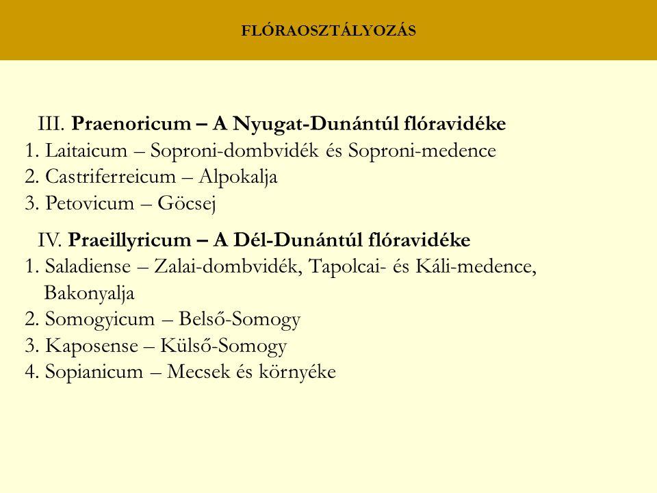 III. Praenoricum – A Nyugat-Dunántúl flóravidéke