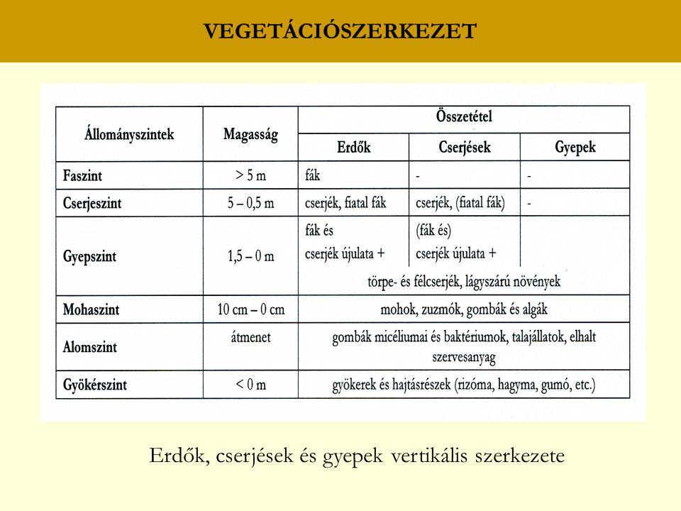 VEGETÁCIÓSZERKEZET Erdők, cserjések és gyepek vertikális szerkezete