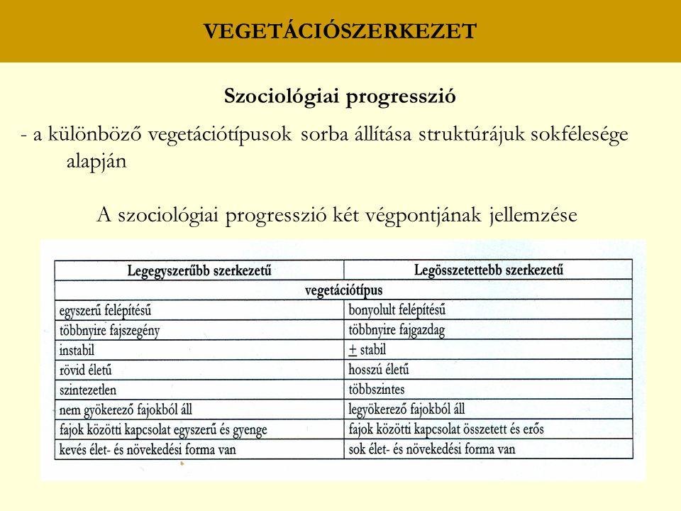 Szociológiai progresszió