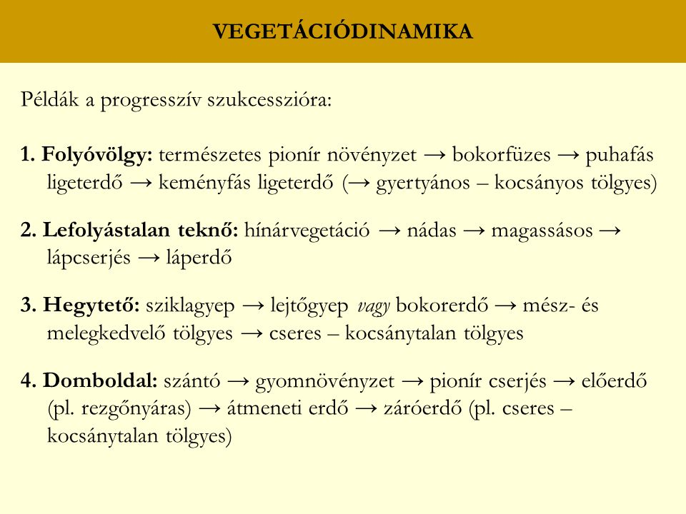 VEGETÁCIÓDINAMIKA Példák a progresszív szukcesszióra: