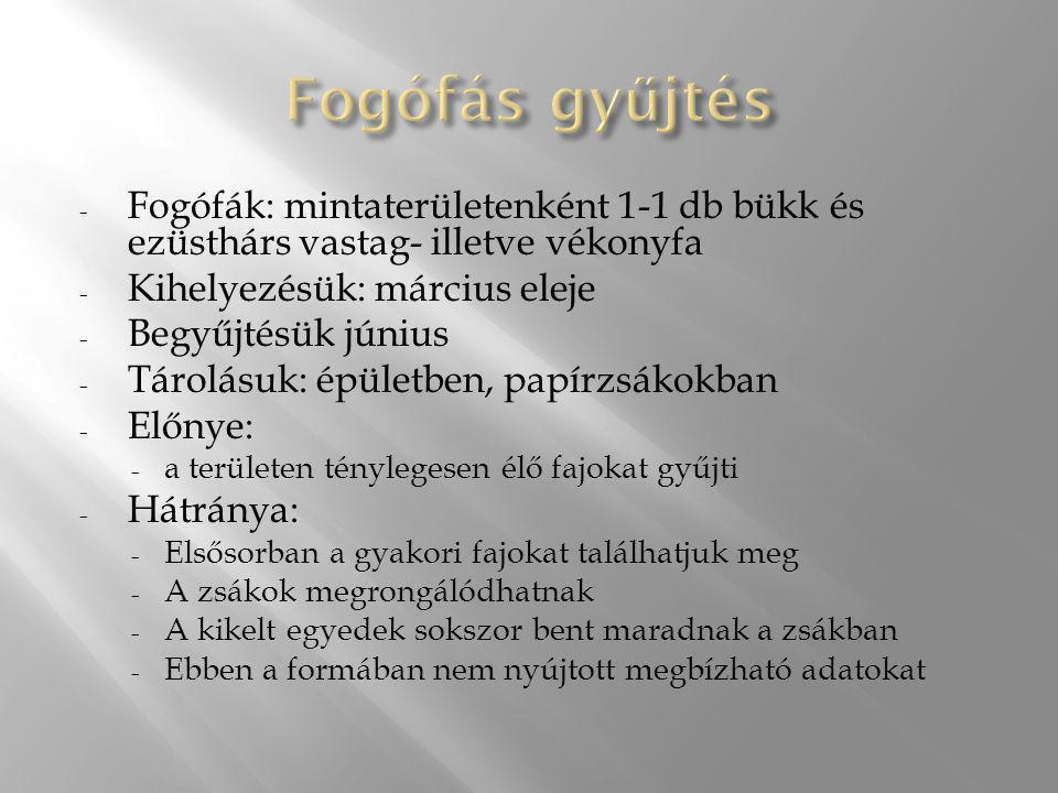 Fogófás gyűjtés Fogófák: mintaterületenként 1-1 db bükk és ezüsthárs vastag- illetve vékonyfa. Kihelyezésük: március eleje.