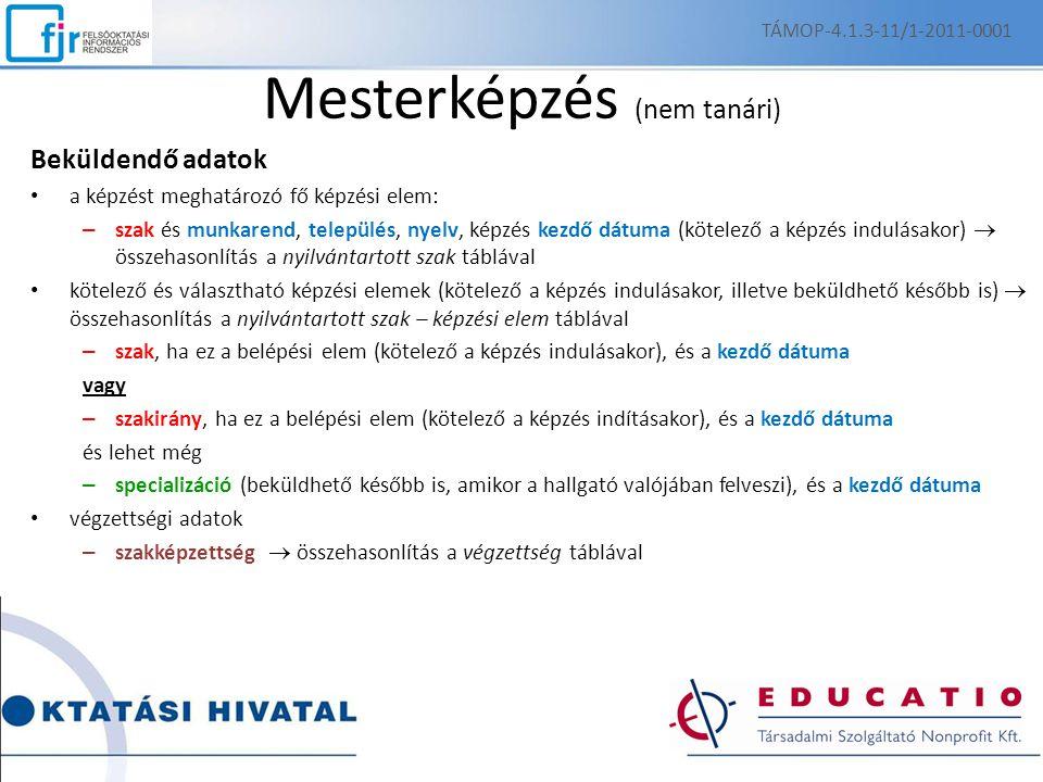 Mesterképzés (nem tanári)