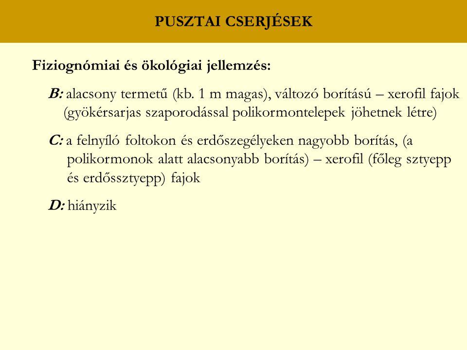 PUSZTAI CSERJÉSEK Fiziognómiai és ökológiai jellemzés: B: alacsony termetű (kb. 1 m magas), változó borítású – xerofil fajok.