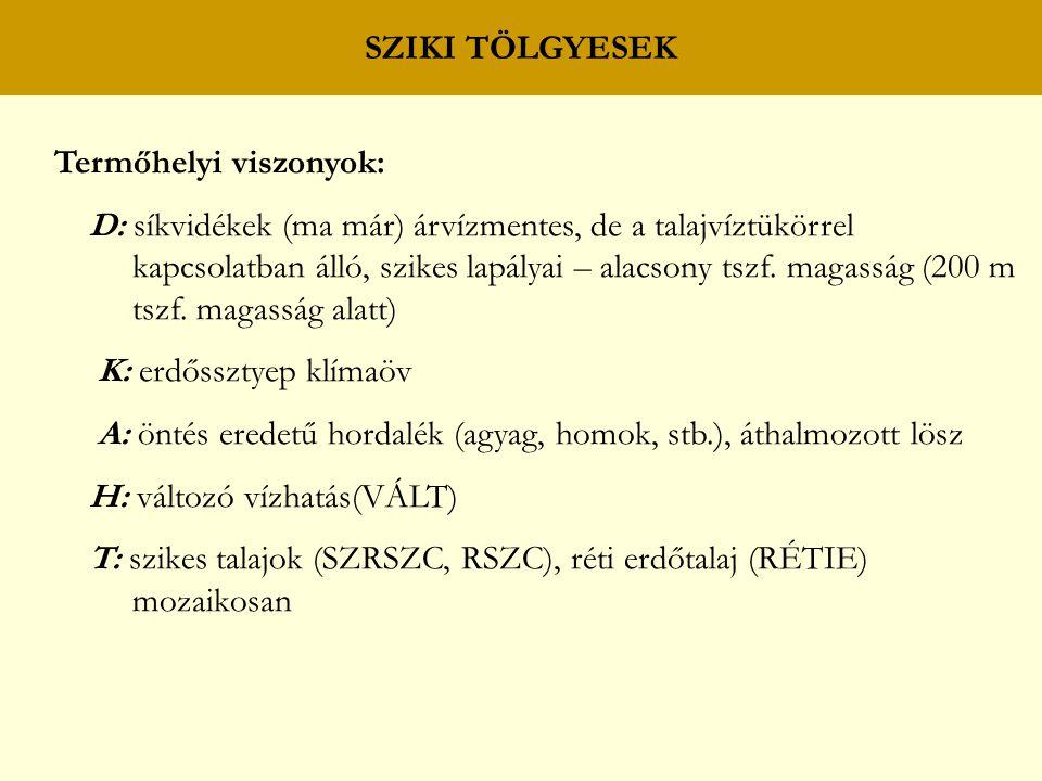 SZIKI TÖLGYESEK Termőhelyi viszonyok: D: síkvidékek (ma már) árvízmentes, de a talajvíztükörrel.