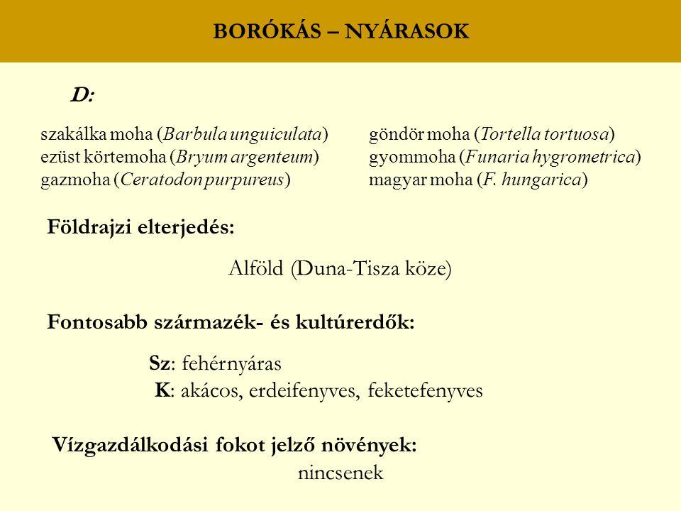 Alföld (Duna-Tisza köze)