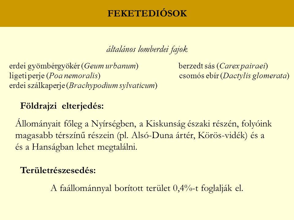 általános lomberdei fajok