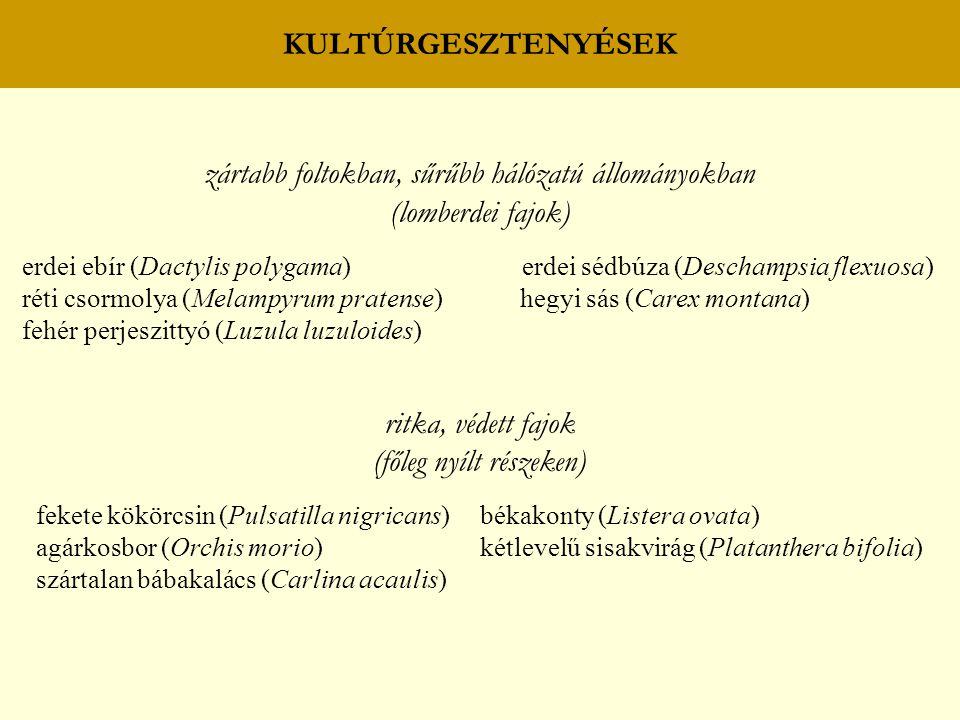 zártabb foltokban, sűrűbb hálózatú állományokban (lomberdei fajok)
