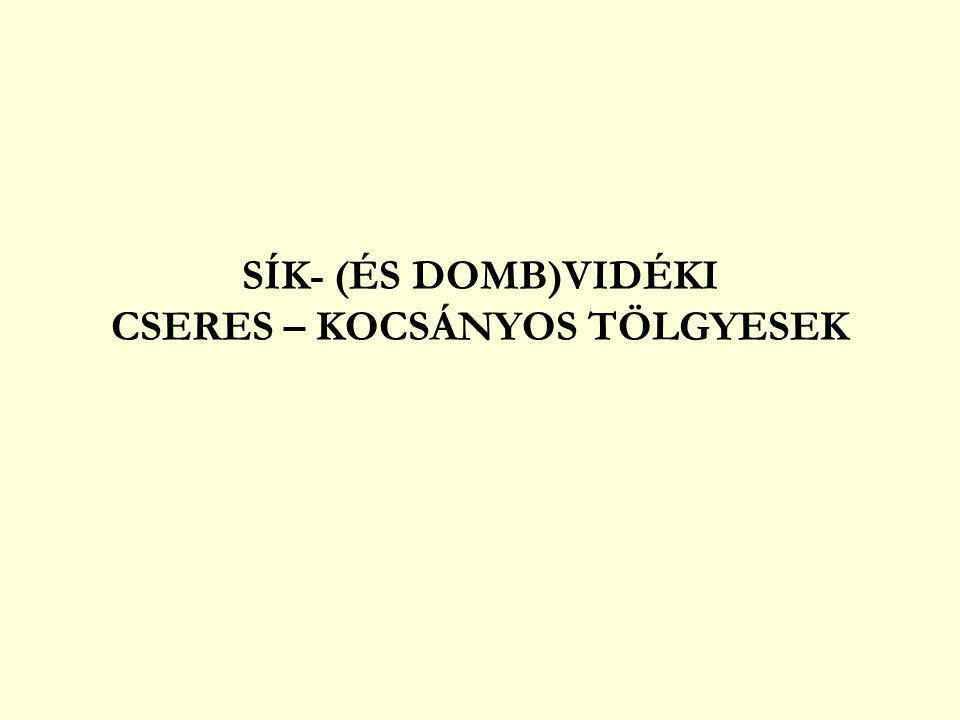 SÍK- (ÉS DOMB)VIDÉKI CSERES – KOCSÁNYOS TÖLGYESEK
