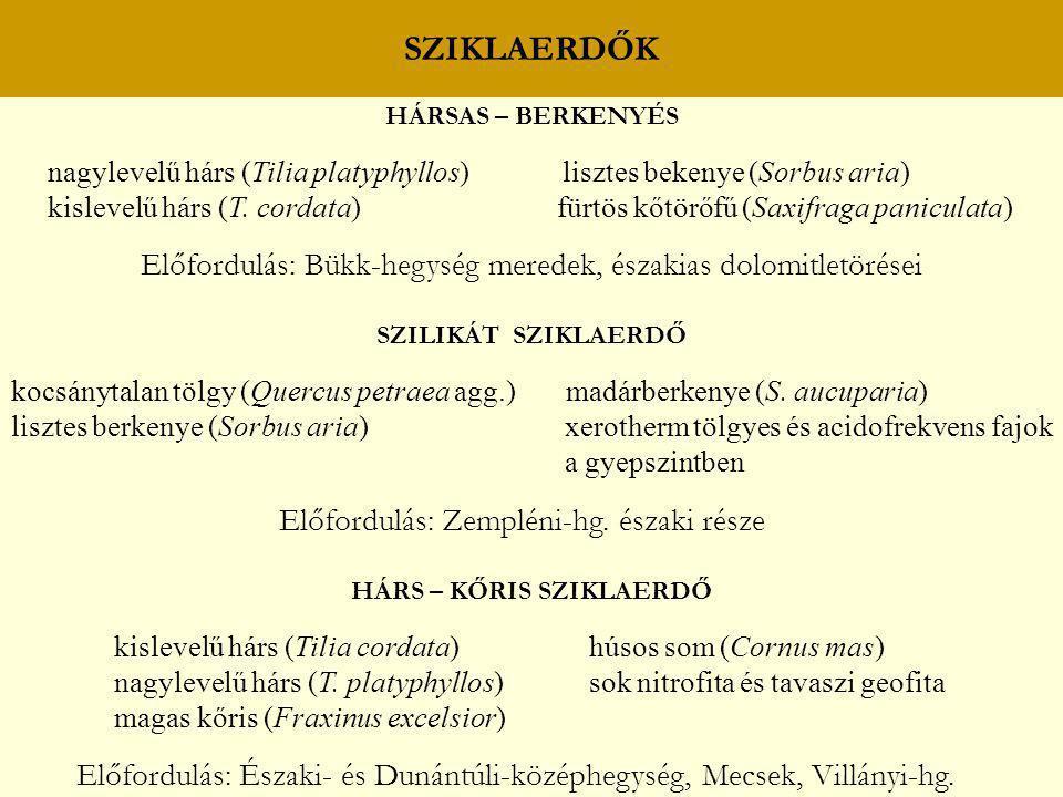 HÁRS – KŐRIS SZIKLAERDŐ