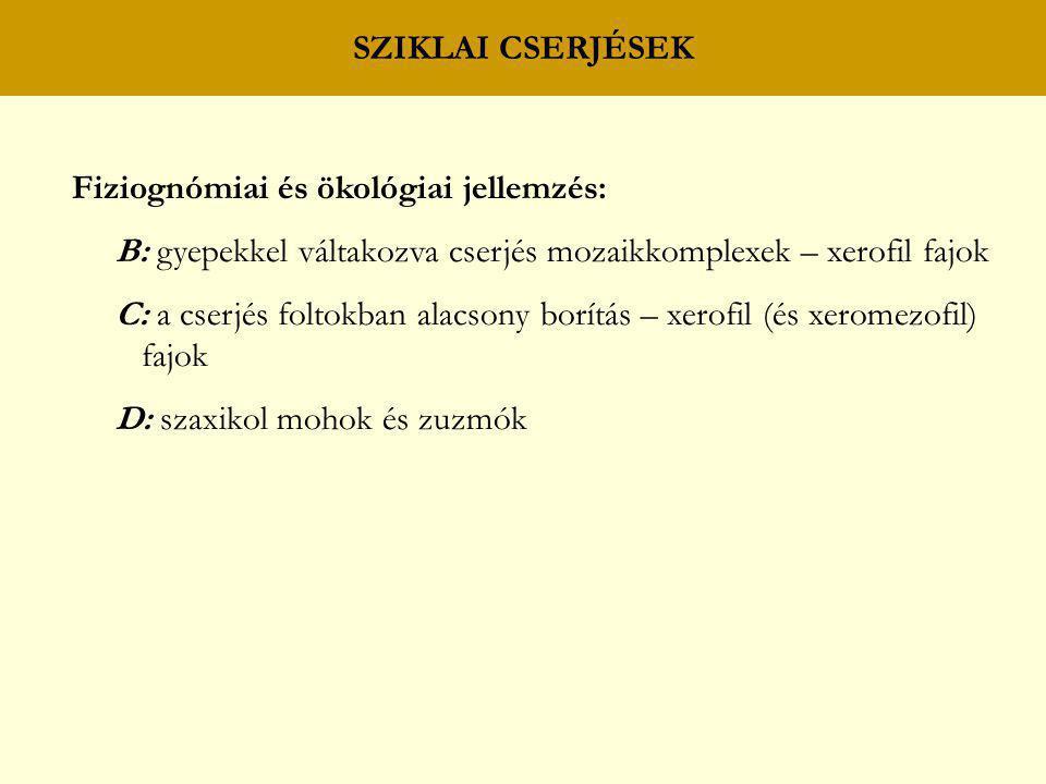 SZIKLAI CSERJÉSEK Fiziognómiai és ökológiai jellemzés: B: gyepekkel váltakozva cserjés mozaikkomplexek – xerofil fajok.