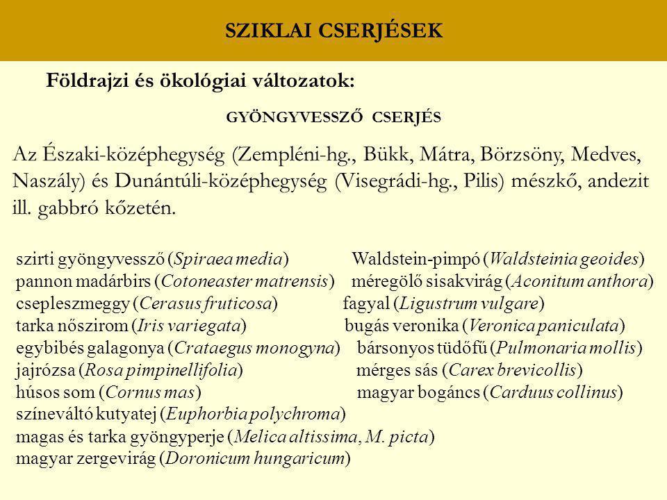 Földrajzi és ökológiai változatok: