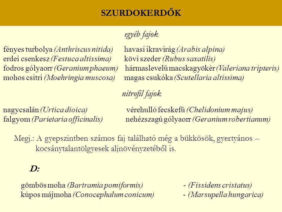 SZURDOKERDŐK egyéb fajok nitrofil fajok D: