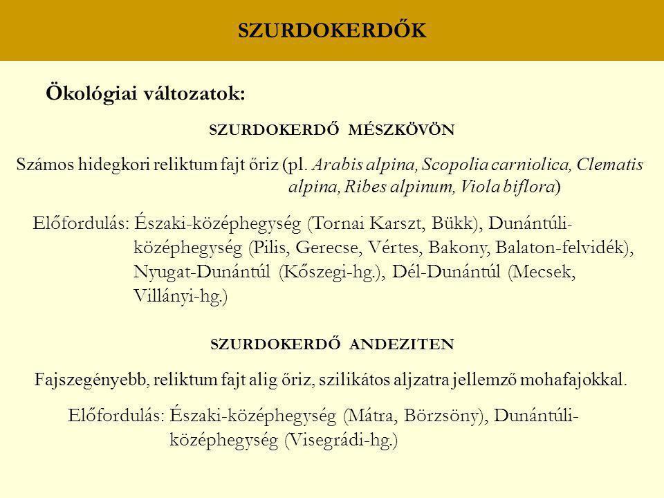 SZURDOKERDŐ MÉSZKÖVÖN SZURDOKERDŐ ANDEZITEN