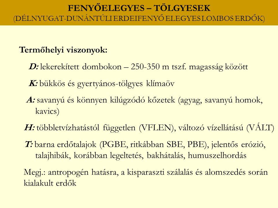 FENYŐELEGYES – TÖLGYESEK (DÉLNYUGAT-DUNÁNTÚLI ERDEIFENYŐ ELEGYES LOMBOS ERDŐK)