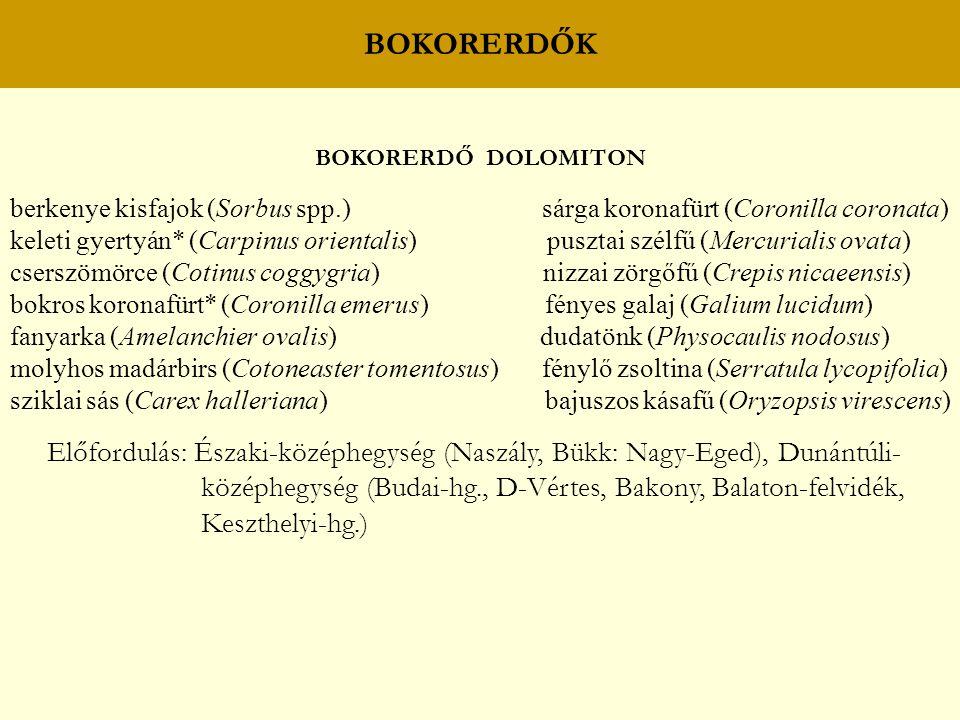 BOKORERDŐK BOKORERDŐ DOLOMITON. berkenye kisfajok (Sorbus spp.) sárga koronafürt (Coronilla coronata)