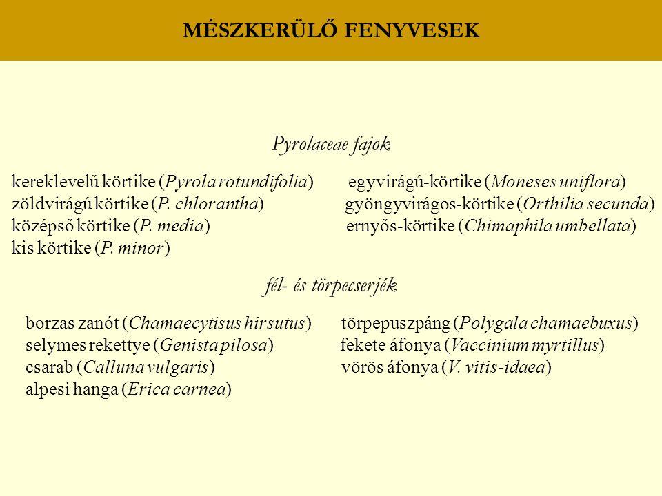 MÉSZKERÜLŐ FENYVESEK Pyrolaceae fajok fél- és törpecserjék