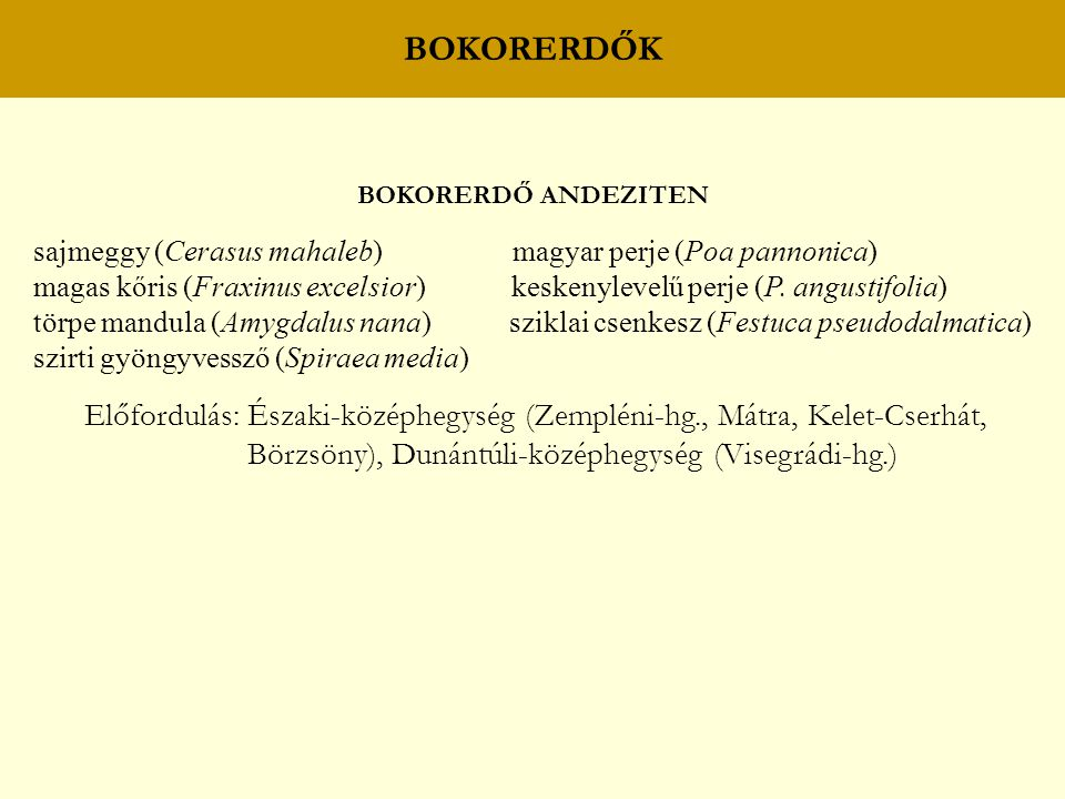BOKORERDŐK BOKORERDŐ ANDEZITEN. sajmeggy (Cerasus mahaleb) magyar perje (Poa pannonica)