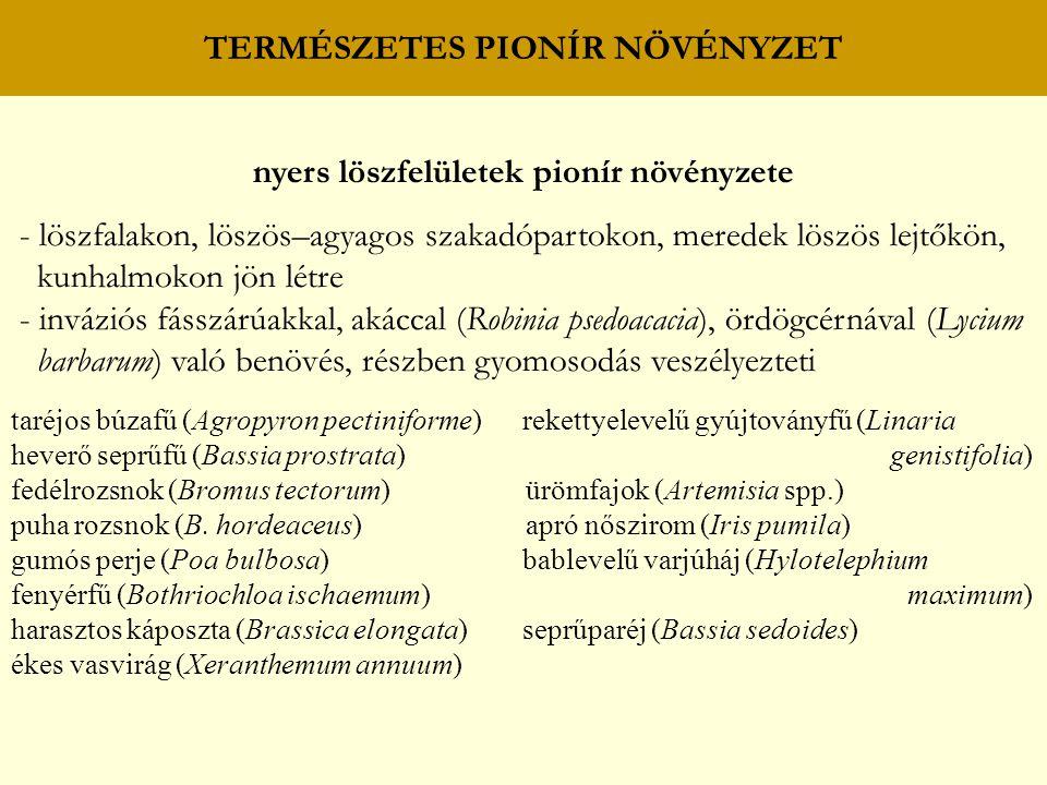 TERMÉSZETES PIONÍR NÖVÉNYZET