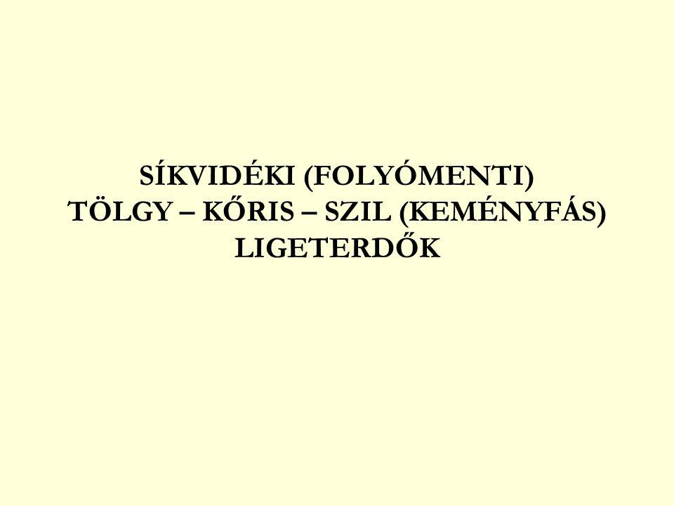 SÍKVIDÉKI (FOLYÓMENTI) TÖLGY – KŐRIS – SZIL (KEMÉNYFÁS) LIGETERDŐK