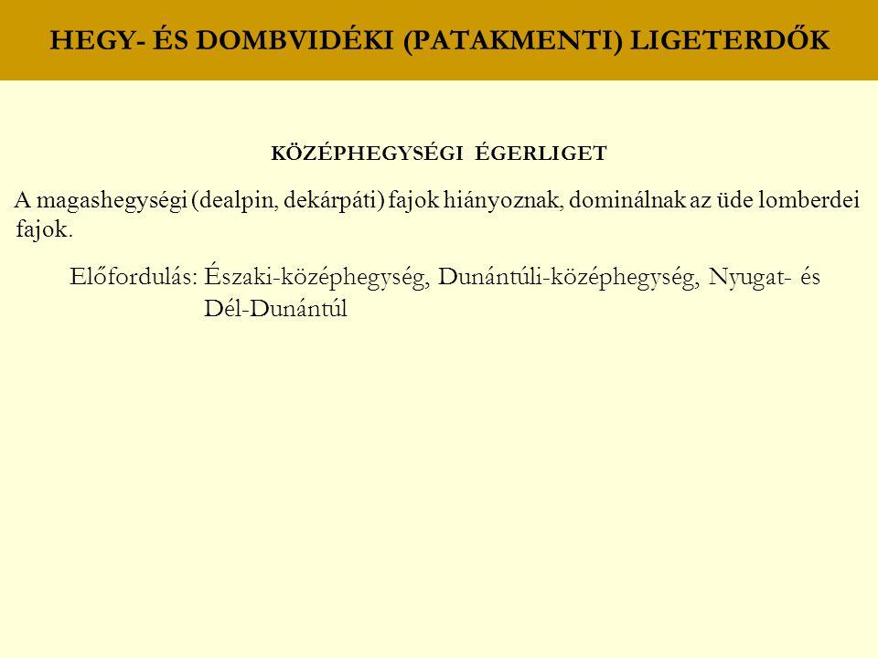 HEGY- ÉS DOMBVIDÉKI (PATAKMENTI) LIGETERDŐK