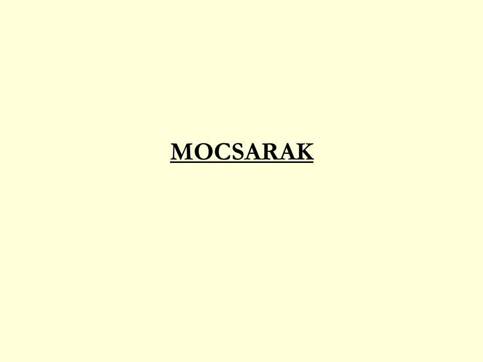 MOCSARAK