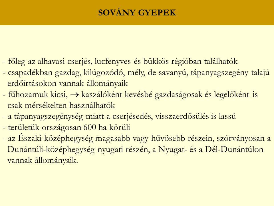SOVÁNY GYEPEK - főleg az alhavasi cserjés, lucfenyves és bükkös régióban találhatók.