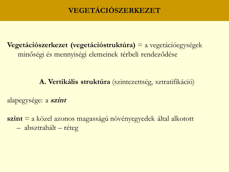 A. Vertikális struktúra (szintezettség, sztratifikáció)