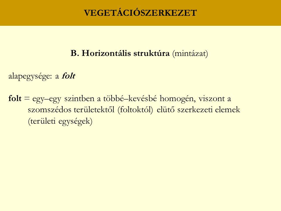 B. Horizontális struktúra (mintázat)