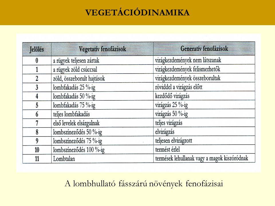 A lombhullató fásszárú növények fenofázisai