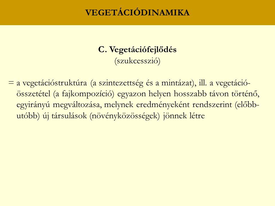 VEGETÁCIÓDINAMIKA C. Vegetációfejlődés. (szukcesszió)