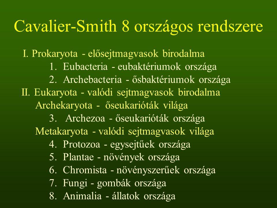 Cavalier-Smith 8 országos rendszere