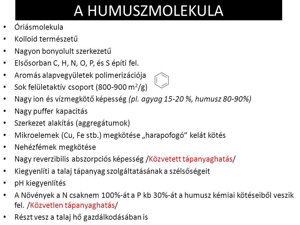 A HUMUSZMOLEKULA Óriásmolekula Kolloid természetű