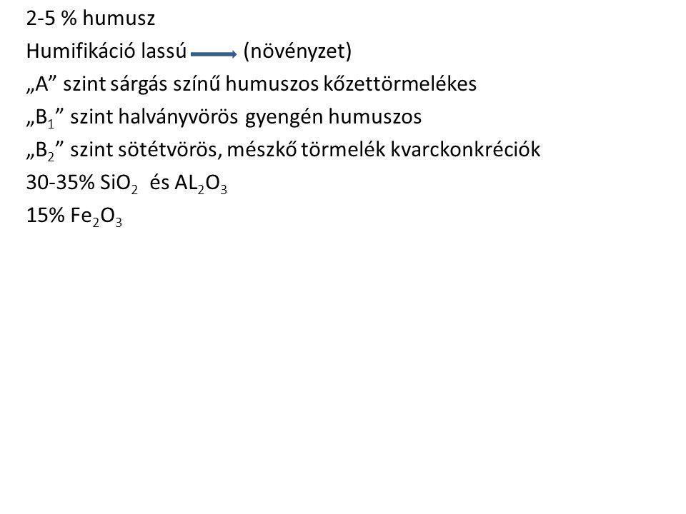 """2-5 % humusz Humifikáció lassú (növényzet) """"A szint sárgás színű humuszos kőzettörmelékes """"B1 szint halványvörös gyengén humuszos """"B2 szint sötétvörös, mészkő törmelék kvarckonkréciók 30-35% SiO2 és AL2O3 15% Fe2O3"""