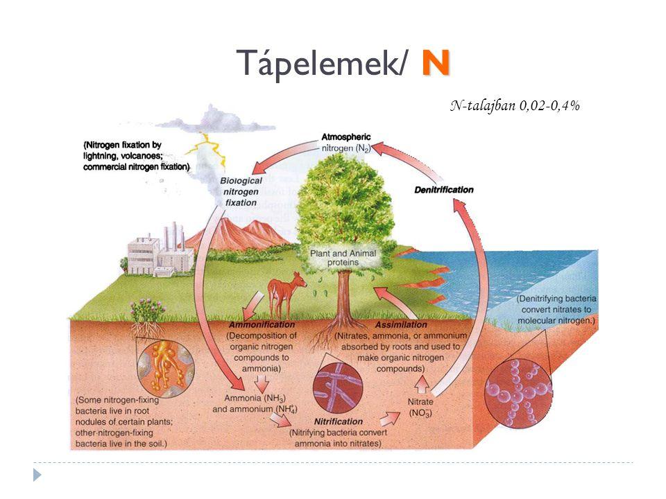 Tápelemek/ N N-talajban 0,02-0,4%