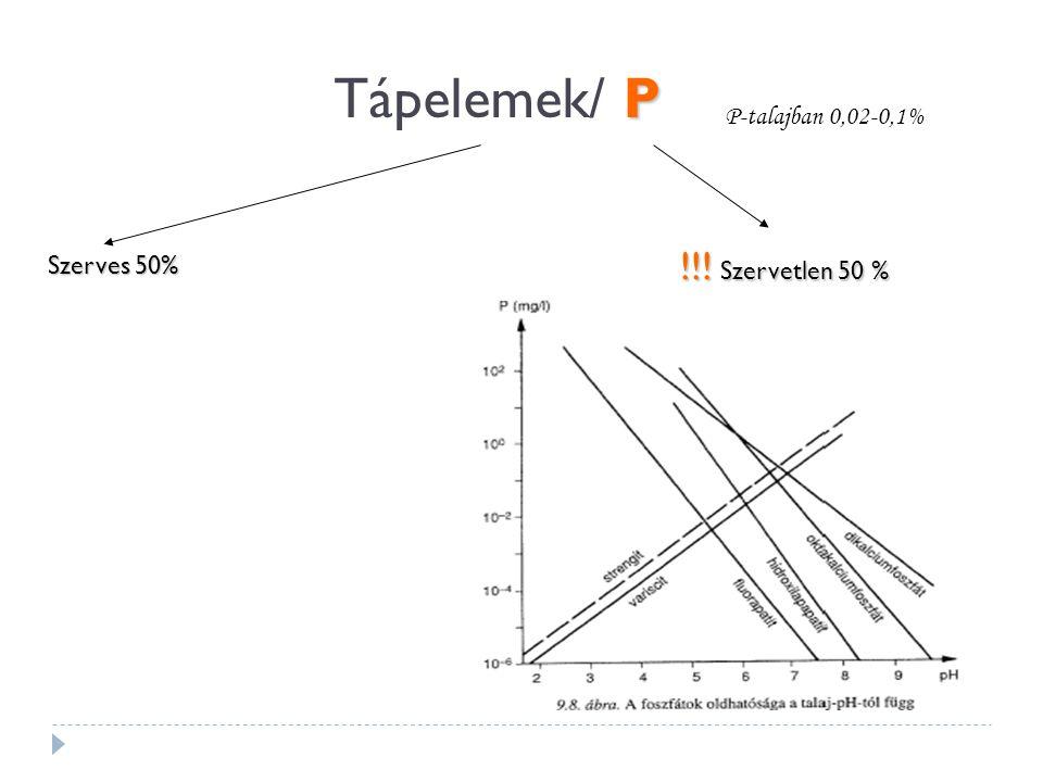 Tápelemek/ P P-talajban 0,02-0,1% !!! Szervetlen 50 % Szerves 50%