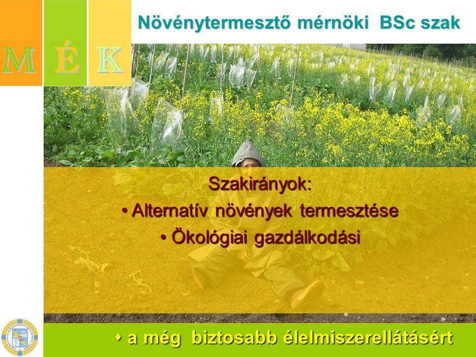 Növénytermesztő mérnöki BSc szak