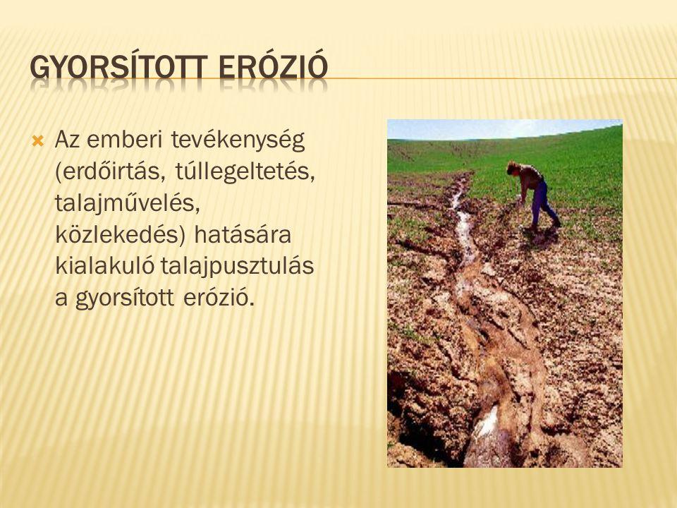 Gyorsított erózió Az emberi tevékenység (erdőirtás, túllegeltetés, talajművelés, közlekedés) hatására kialakuló talajpusztulás a gyorsított erózió.