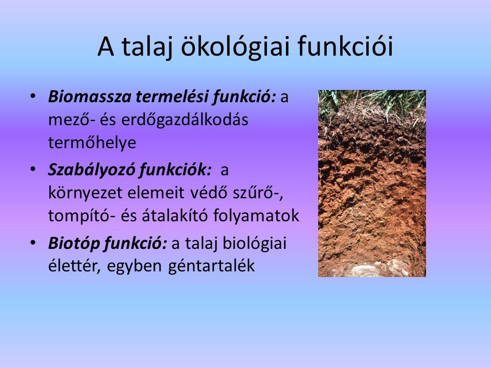 A talaj ökológiai funkciói