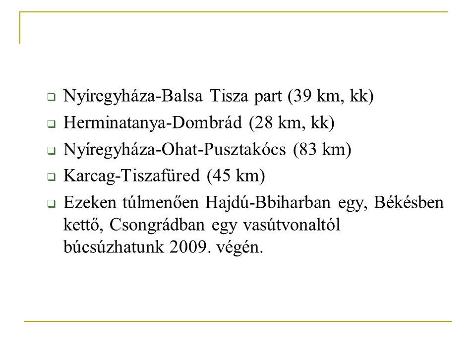 Nyíregyháza-Balsa Tisza part (39 km, kk)