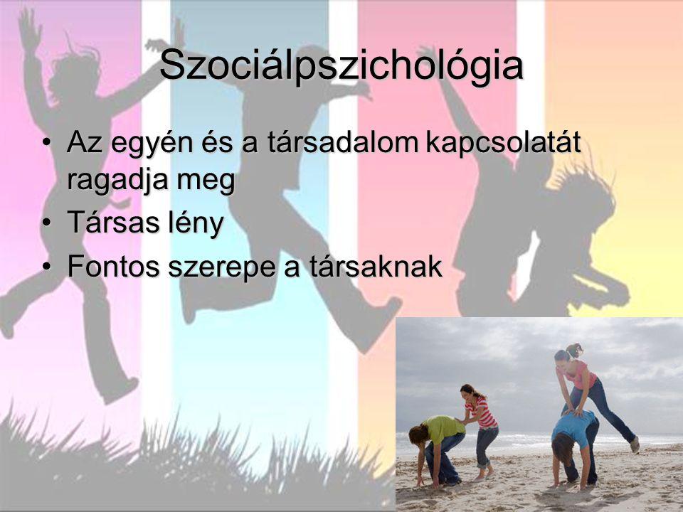 Szociálpszichológia Az egyén és a társadalom kapcsolatát ragadja meg