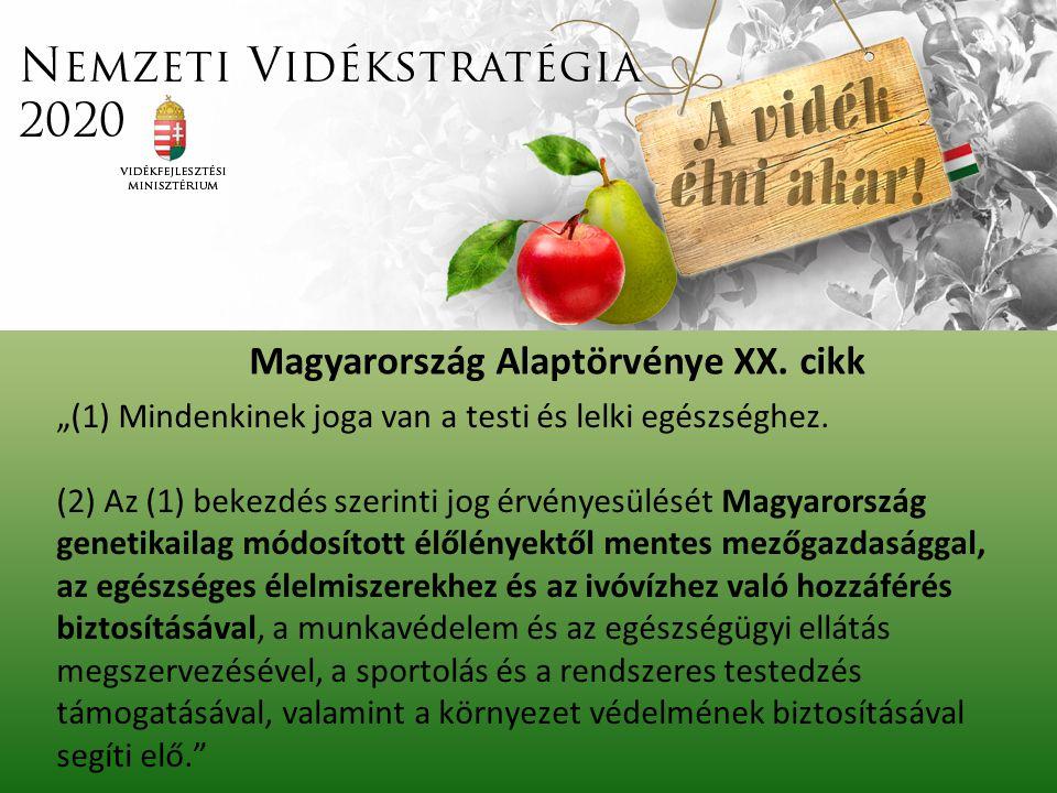 Magyarország Alaptörvénye XX. cikk